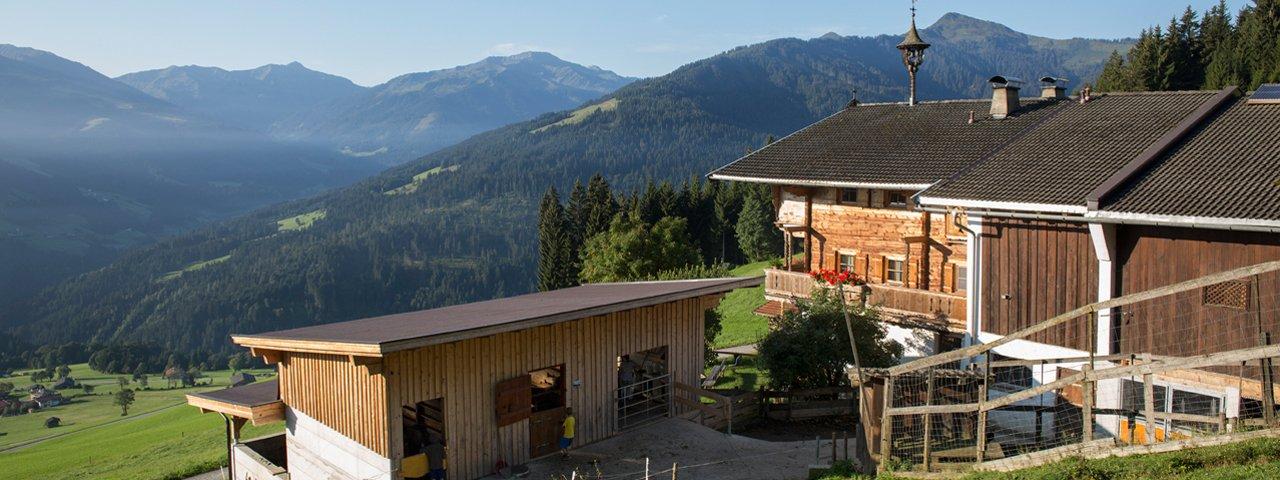 Flecklhof in Hopfgarten im Brixental, © Tirol Werbung/Lisa Hörterer