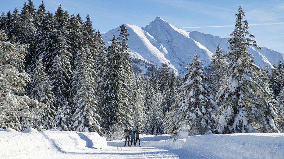 Langlaufen in der Olympiaregion Seefeld, © Tirol Werbung /Johannes Aitzetmüller