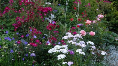 Blumenmeer, © privat