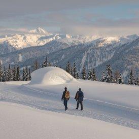 Winterwandern in Kartitsch, © Tirol Werbung / Ramon Haindl