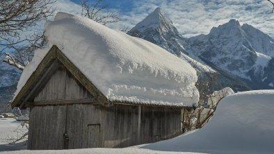 Winterwandern im Moos, © Birgit Standke