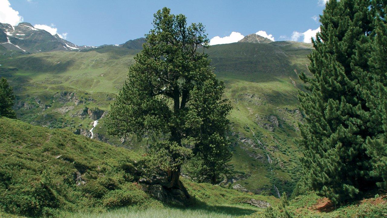 , © Naturpark Ötztal