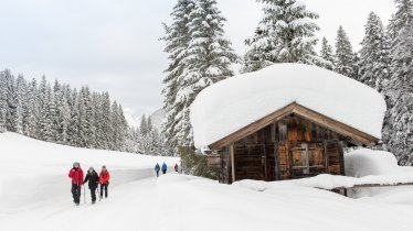 Unterwegs im winterlichen Wildmoos, © Olympiaregion Seefeld / Johannes Geyer