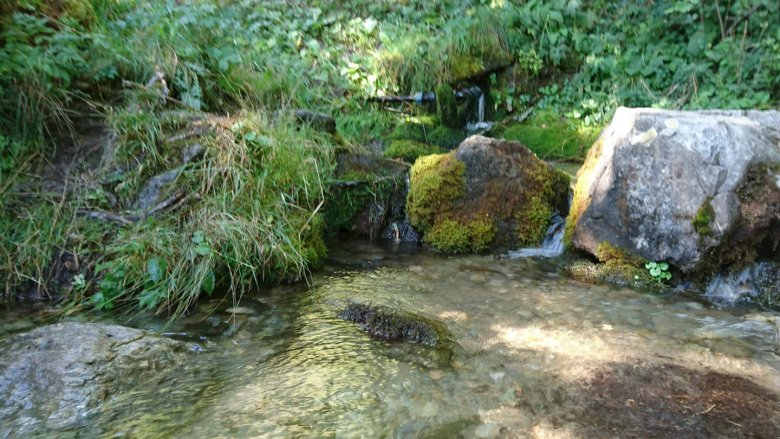 Am Wasserwanderweg in Ladis