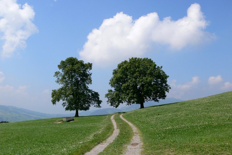 Jakobsweg-Tirol-(c)-Verein-Regionalmanagement-regio