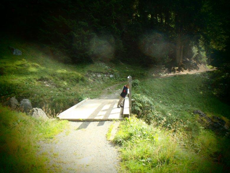 Einige Abschnitte des Lechwegs sind durchwegs flach und auch für kleinere Kinder gut zu gehen (c) Tirol Werbung – Julia König