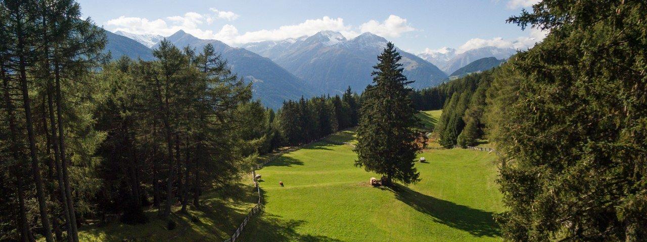 Zedlach Paradise in the Hohe Tauern National Park, © Tirol Werbung/W9 studios