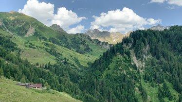 Ausblick auf der Naviser Almenrunde, © Tirol Werbung / Jannis Braun