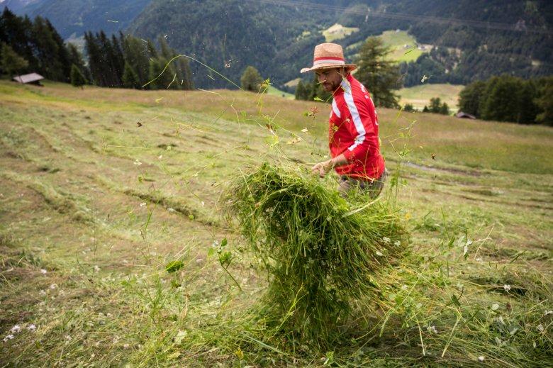 Wiese für Wiese: Eine Fläche von 24 Fußballfeldern wird Michael in diesem Sommer bearbeiten.