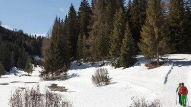 Winterwanderung: Harbe Runde im Naturpark Kaunergrat, © Robert Pupeter