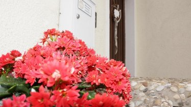 Haus Fabro, Eingang