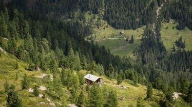Trelebitsch-Alm im Nationalpark Hohe Tauern, © Sebastian Höhn