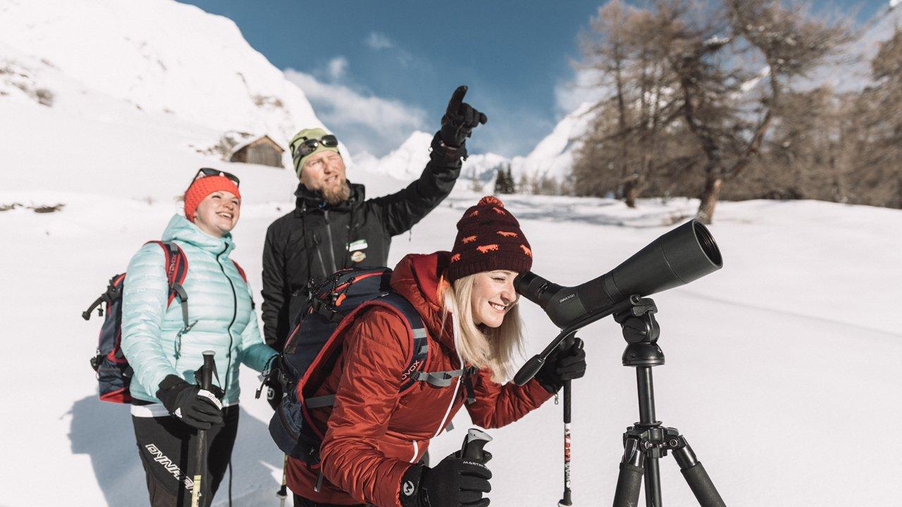 Nature Watch im Winter im Nationalpark Hohe Tauern, © Nationalpark Hohe Tauern / Robert Maybach