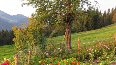 https://images.seekda.net/AT_UAB7-05-24-03/Garten.jpg