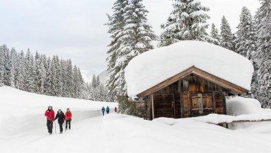 Winterwandern rund um Seefeld, © Olympiaregion Seefeld, Johannes Geyer