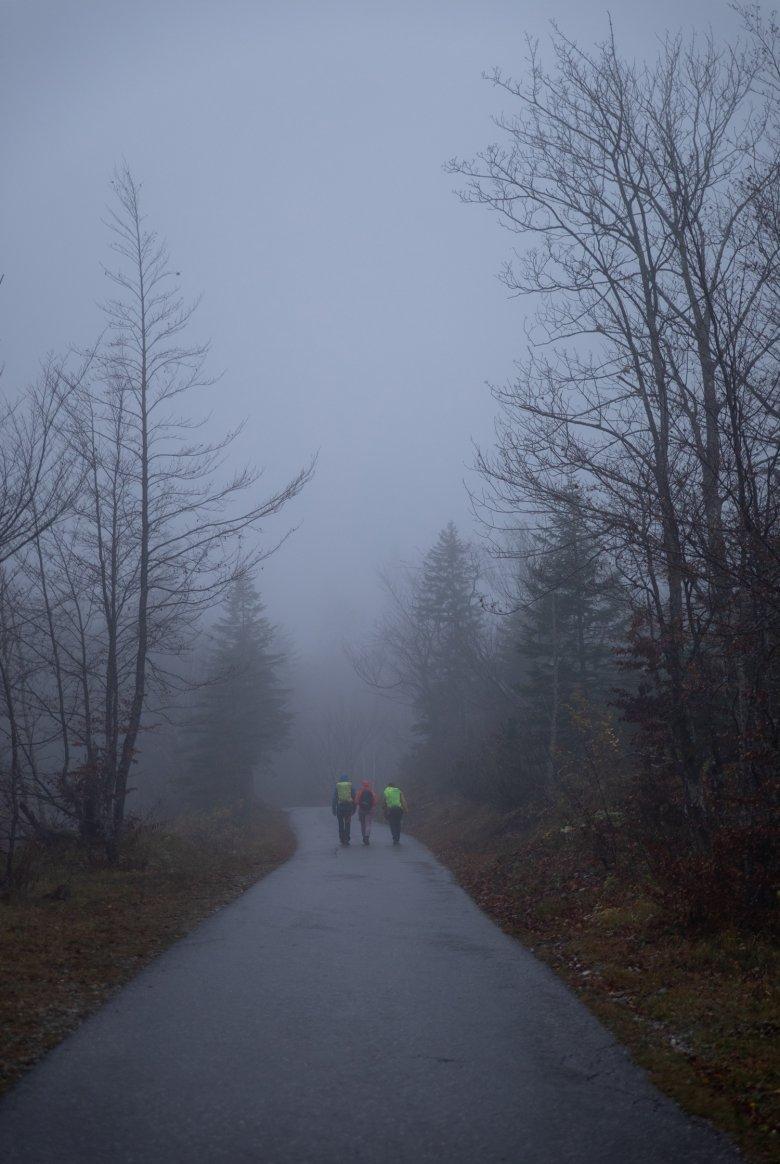 Im Nebel geht es los.
