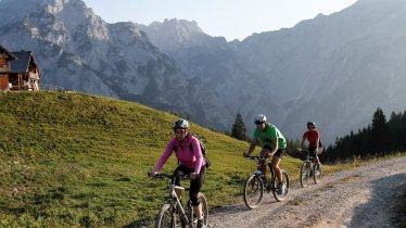 MTB-Tour zur Walderalm, © Tourismusverband Hall Wattens