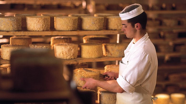 Handgepflegter Käse, © ErlebnisSennerei Zillertal