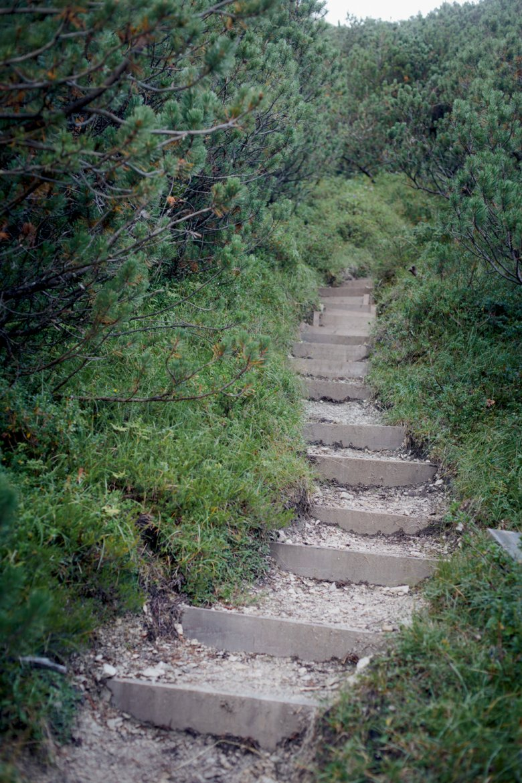 """Diesen Wegabschnitt haben die Wegsanierer """"Stiegenhaus"""" genannt, weil die Stufen so eng gesetzt sind."""