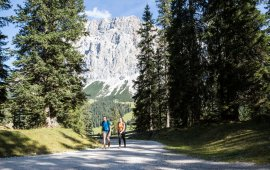 Wanderweg im Gaistal, © Tirol Werbung/Dominik Gigler