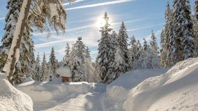 Winterwanderweg in Leutasch, © Olympiaregion Seefeld, Johannes Geyer
