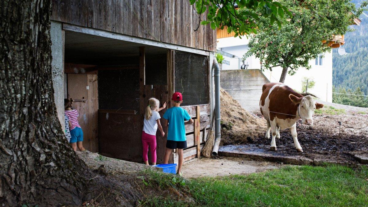 Kindern erschließt sich um Kuhstall, Scheune und Gemüsegarten eine neue Welt., © Tirol Werbung/Lisa Hörterer